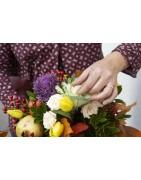 Bouquet a Livorno: i racconti raccolti de La Bottega del Fiore